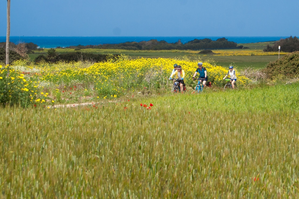 Spring is an excellent season for cycling in Sardinia