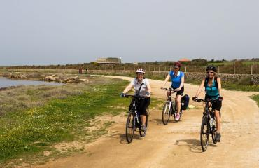Day bike tours: cycling in the marine park
