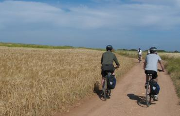 Cycling holiday Sardinia: quiet roads in the Sinis Peninsula